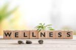 The Wellness Centre