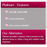 Platinum features